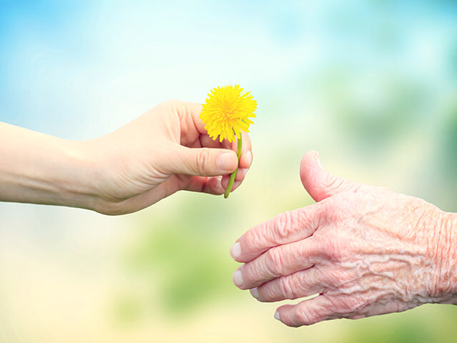 image of a young woman giving a dandelion to senior woman